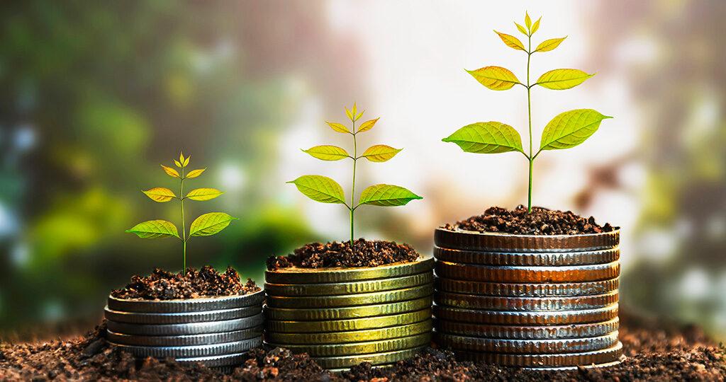 Externalizar servicios permitirá rentabilizar y medir costes